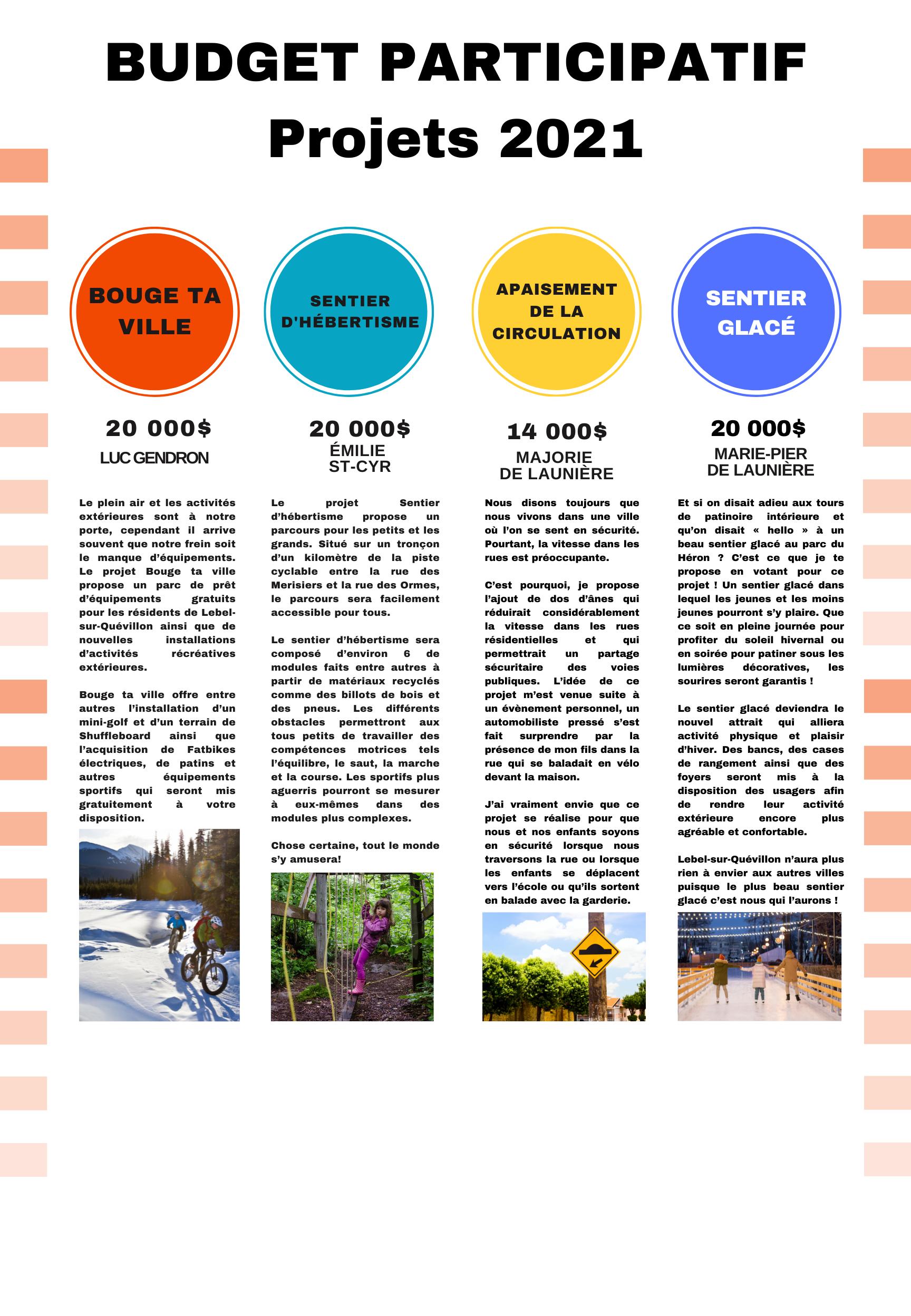 Copie de Copie de budget participatif (1) (1728x2496)
